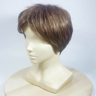 Парик из искусственных волос DG-7102 # 12TT26