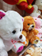 Мягкая игрушка медведь по низкой цене на Таганской | LaNord.ru