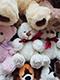 Плюшевый мишка купить в Москве. Лучшие цены и быстрая доставка | LaNord.ru
