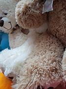 Купить мягкую игрушку медведь по самой доступной цене в Москве. От 600 руб. в интернет-магазине LaNord.ru