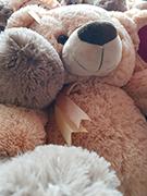 Купить мягкую игрушку медведь. Доставка по Москве. Интернет-магазин LaNord.ru