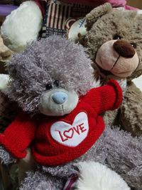 Купить большого медведя на LaNord.ru