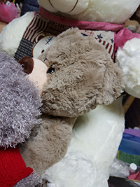 Купить медведя недорого в Москве от 390 руб. | LaNord.ru