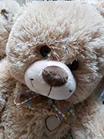 Большие плюшевые медведи в Москве недорого | LaNord.ru