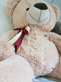 Купить медведя недорого в интернет-магазине LaNord.ru