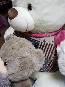 Купить мягкую игрушку плюшего медведя | LaNord.ru