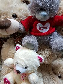 Купить медведя в Москве | LaNord.ru