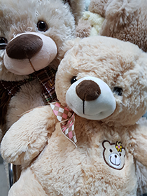 Мишки недорого по самой доступной цене от 3900 рублей | LaNord.ru