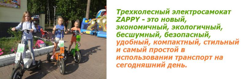 Электросамокат Zappy Зеленый
